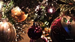 celebration_christmas_tree